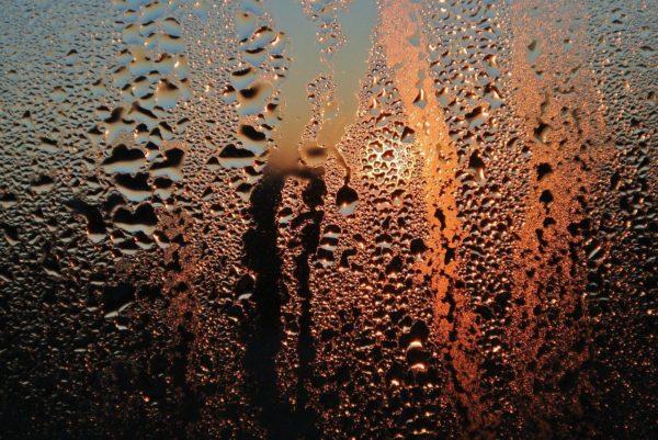 Kondenswasser an einer Scheibe bei zu hoher Luftfeuchtigkeit