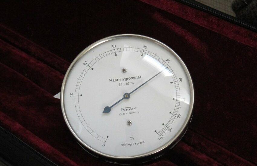 Detailaufnahme Haar-Hygrometer