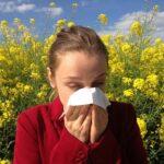 Luftreiniger kaufen zur Vermeidung von Allergien